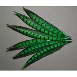 1 plume de queue de faisan lady amherst teintée vert foncé 23-28 cm