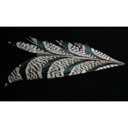 tronçon de plume de queue de faisan lady amherst  naturel 10 cm