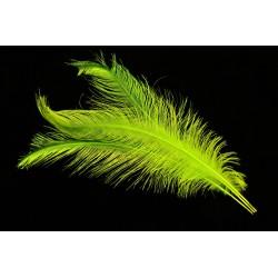 plume d'aile de nandou teintées chartreuse 35-45 cm