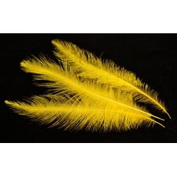 plume d'aile de nandou teintées jaune soleil 35-45 cm