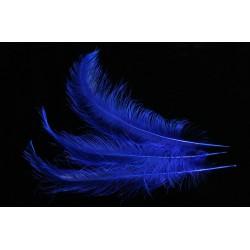 plume d'aile de nandou teintée bleu brillant 35-45 cm