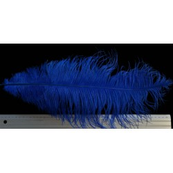 plume d'aile d'autruche teintées bleu brillant 55 cm